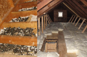 Pinnacle-Pest-Attic-Rats-Before-After